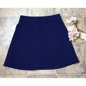 Express A-Line mini skirt size 0